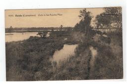 9595 Heide (Calmpthout)  Zicht In Het Putsche Moer Photo Hoelen Cappellen - Kalmthout