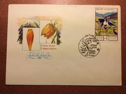 Old USSR Special Cancellation Postal Cover 1976 Mail Stamp. Premier Jour. Flora Of USSR. Saffron Flower. By Sharov - 1923-1991 USSR