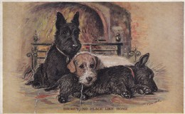 Scottish Terrier  By Mac Chien  Hunde Cane Dog Cpa. 1933 - Honden