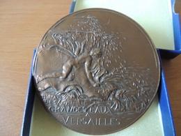 Médailles Des Grandes Eaux De Versailles, 1977, Bronze - France