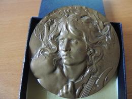Médaille Sur Le Thème De La Musique (Orphée?), Coudray, Bronze, 1981 - Frankrijk