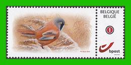 BUZIN - Panure à Moustaches - 1985-.. Oiseaux (Buzin)