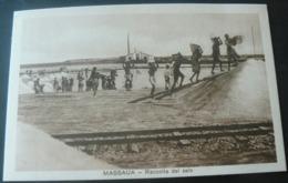 RARE ANCIENT NEW POSTALCARD  OF SALT - WORKS IN MASSAUA ./ANTICA RARA CARTOLINA DELLA SALINA MASSAUA - Erythrée