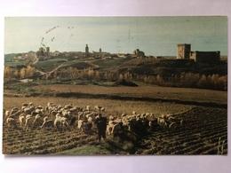 Arévalo 1964 - Ávila