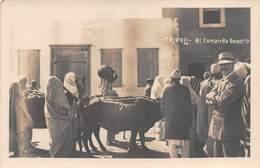 """09066 """"LIBIA - TRIPOLI - AL COMANDO GENERALE"""" ANIMATA, ANIMALI.  CART NON SPED - Libye"""