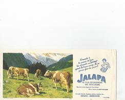Buvard Jalapa - Buvards, Protège-cahiers Illustrés