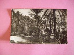 Algérie - Carte Postale Ancienne De Biskra (Constantine): Jardin De L'Hôtel Transatlantique - Biskra