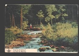 Saint-Hubert - Forêt De St-Hubert - Le Pont De Mauricy - Animation - Colorisée - Saint-Hubert