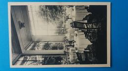 AIX LES BAINS  HOTEL DE L'EUROPE RESTAURANT TERRASSE - Aix Les Bains