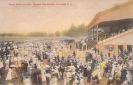 Grand Stand & Lawn, Ellerslie Racecourse, Auckland N.Z. - Neuseeland