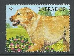 """FR YT 4545 """" Le Labrador """" 2011 Neuf** - France"""