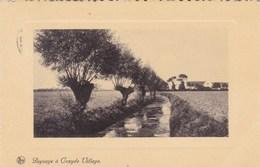 Koksijde, Paysage A Coxyde Village (pk57058) - Koksijde