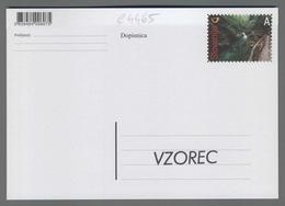 C4465 SLOVENIA Postal Stationery 120 OBLETNICA ODPRTJA POTI SKOZI SOTESKO VINTGAR A Postcard Cartolina Postale - Slovenia
