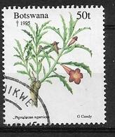 BOTSWANA  1995 Christmas - Plants   Pterodiscus Ngamicus     Used - Botswana (1966-...)