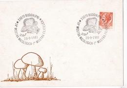 Superbe Cachet  Du 20/09/1981 Sur Carte Dos Vierge Italie Champignon Cèpes,pleurotes....champignons Mushroom Setas Pilze - Heilpflanzen