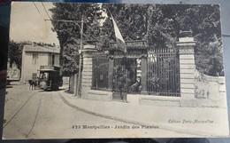Cpa - 34 -  Montpellier - Jardin Des Plantes - Montpellier
