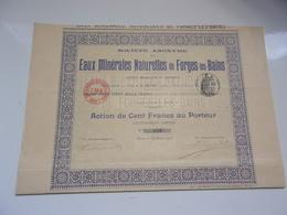 EAUX MINERALES NATURELLES DE FORGES LES BAINS (1905) - Actions & Titres