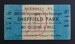 Bluebell Railway Ticket, Dog & Passenger Sheffield Park. - Europe