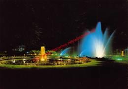 Gemeentepark Bij Nacht - Brasschaat - Brasschaat