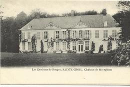 Les Environs De Bruges Sainte-Croix Chateau De Royeghem     (11642) - Brugge