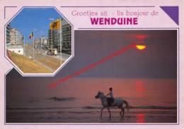 Ruiter Met Paard - Wenduine - Wenduine
