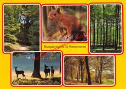 Bungalowpark De Vossemeren - Lommel - Lommel