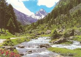 73. CPM. Savoie. Haute Maurienne. Paysage Alpin (photo René Girard) - France