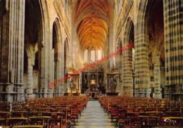 La Basilique - Crypte Romane - Saint-Hubert - Saint-Hubert