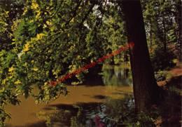 Rustoord Emmaüs - Weelde - Ravels