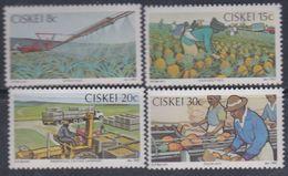 Ciskei N° 26 / 29 XX Industrie Agricole De L'ananas. La Série Des 4 Valeurs Sans Charnière, TB - Ciskei
