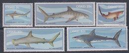 Ciskei N° 38 / 42 XX  Faune Marine : Requins. La Série Des 5 Valeurs Sans Charnière, TB - Ciskei
