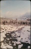 Telefonkarte Rumänien - Winterlandschaft  - 01.2004 - Rumänien