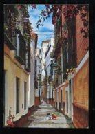 CPM Neuve Espagne SEVILLA Barrio De Santo Cruz Calle De La Pimienta - Sevilla