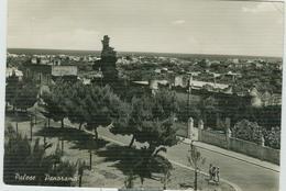 PALESE (BARI) -B/N, ANIMATA, VIAGGIATA , EDIZ. LO BUONO - BARI - Bari