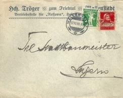 """Motiv Brief  """"Tröger, Holzkonservierung *Nassovia*, Wallenstadt""""        1919 - Lettres & Documents"""