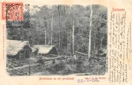 10762 - Surinam - Buitenkam Op Een Goudplacet - Belle Oblitération - Surinam