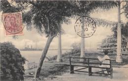 10764 - Surinam - Op De Reede Van Paramaribo - Belle Oblitération - Surinam