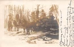 10789 - Etats Unis - Wisconsin - Photo Card - Doering - Bûcherons - Etats-Unis