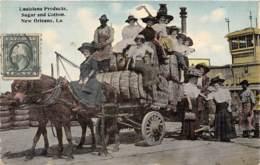 10804 - Etats Unis - Products Of New Orleans - Beau Cliché - Prostitutes ? - Etats-Unis