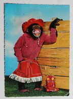 CPSM Vintage Singe Déguisé En Cow Boy Santiag - Singes