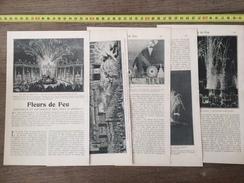 ENV 1900 FLEURS DE FEU GRANDEUR ET DECADENCE DES FEUX D ARTIFICE SOLEILS TOURNANTS - Vieux Papiers