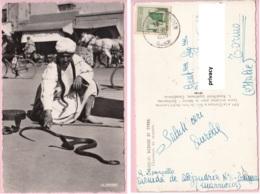 Maroc Marocco  - Casablanca  - Scenes E Types - Charmeurs De Serpents Serpenti - Casablanca