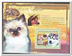 Guinee 2007, Postfris MNH, Cats, Dogs - Guinee (1958-...)