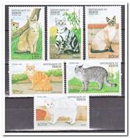 Benin 1998, Postfris MNH, Cats - Benin – Dahomey (1960-...)