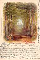 WARBURG V D HOHEN SONNE GERMANY~1905 POSTMARK ARTIST DRAWN WEZEL & NAUMANN PUBL POSTCARD 39629 - Warburg