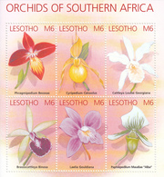 2002 Lesotho Orchids Fleurs Of Southern Africa  Miniature Sheet Of 6 MNH - Lesotho (1966-...)