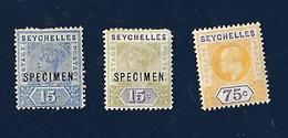 Seychelles 1890 SPECIMEN - Seychelles (1976-...)