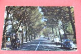 Rimini Riccione Viale Ceccarini 1964 + Vigile E Auto VW Maggiolino - Autres Villes