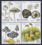 Serbia 2019 Flowers - Mushrooms - Champignons, MNH (**) - Serbie
