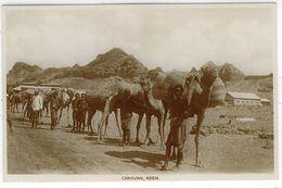 YEMEN ADEN CARAVAN FOTO - Yemen